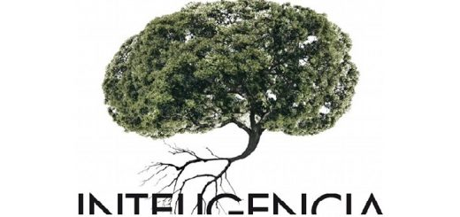 inteligencia-jordi-pigem-FRAG-720x340