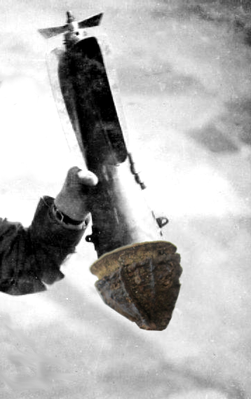 Eucalipto-bomba