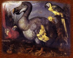 Pintura de un dodo