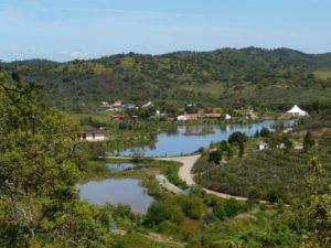 Paisaje de retención de agua como un medio contra la desertificación después de un diseño de Sepp Holzer en Tamera, Portugal