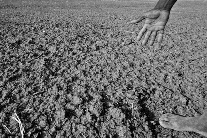 Área afectada por la sequía en Karnataka, India