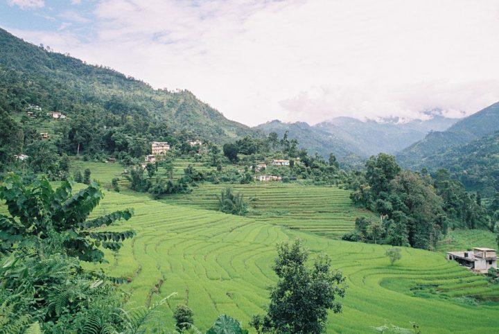 Sikkim, un estado de la India en el Himalaya, ha pasado con éxito de la agricultura industrial a la agroecológica.