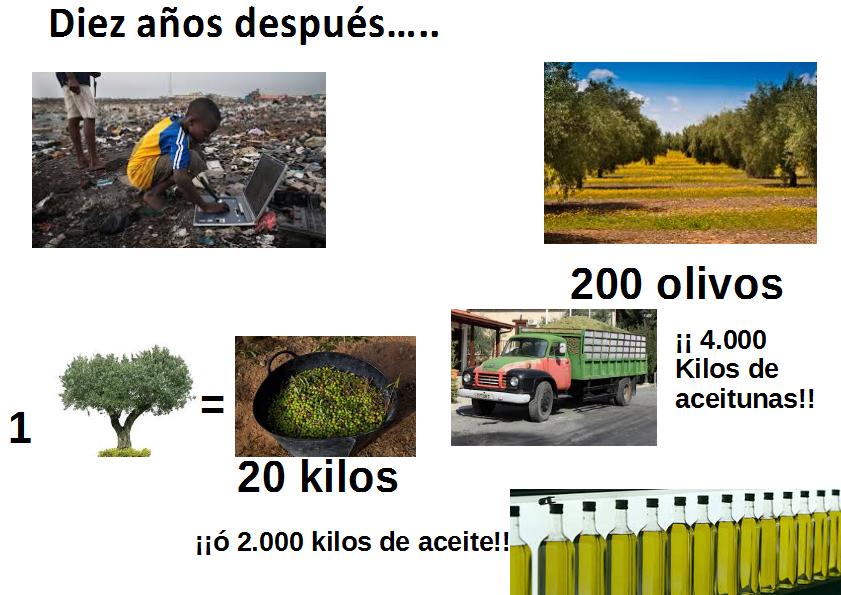 Móvil u olivo