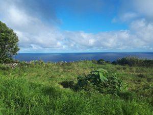 Isla de Flores - Foto del Autor