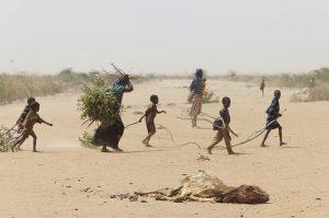 En las afueras de Dadaab, donde muchos refugiados se refugian ya que los campamentos principales están superpoblados, una familia recoge palos y ramas para hacer leña y construir un refugio para protegerse de los elementos y los animales salvajes. Los cadáveres de los animales que han perecido en la sequía están esparcidos por el desierto. Foto: Andy Hall/Oxfam