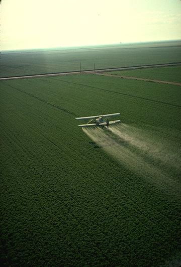 Avioneta fumigando con plaguicidas un campo agrícola en California