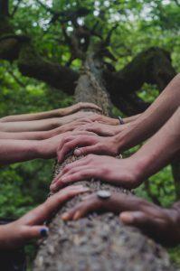 Manos en la naturaleza - Banco de imágenes Unsplash