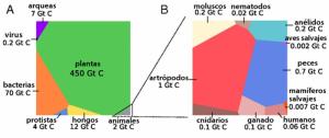 """Cantidad de vida. Fuente: """"The Biomass Distribution on Earth"""" por Bar-On et al., en PNAS."""